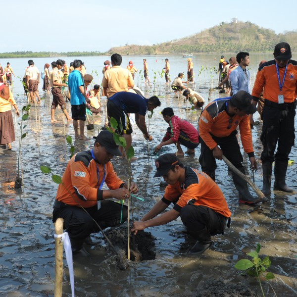 Penanggulangan Bencana, Pengurangan Resiko Bencana  DRR Indonesia